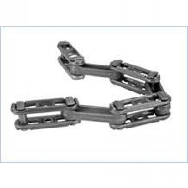 Double Pitch Conveyor Chain with Attachments (C2040, C2050) #1 image