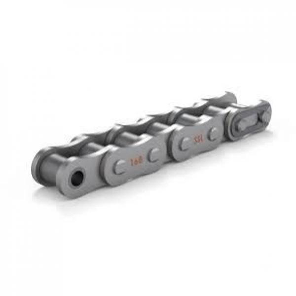 Type S or C Agricultural Roller Chains #3 image